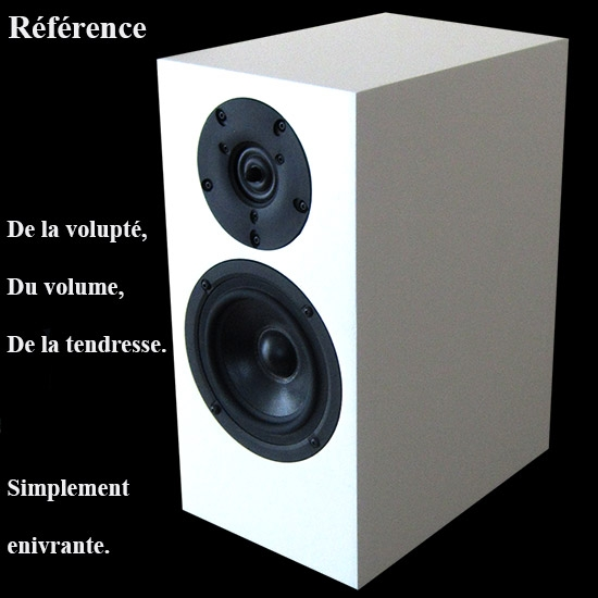 REFERENCE WIL AUDIO SCANSPEAK